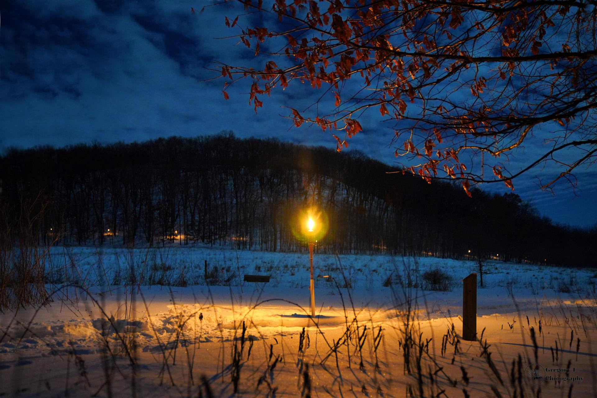 Torchlight view of hill